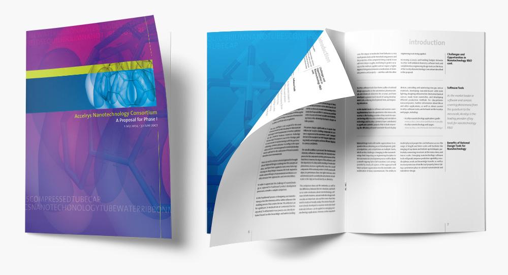 Accelrys Nanotechnology proposal